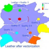 PhotoTrace vectorization of leather with quality zone overview